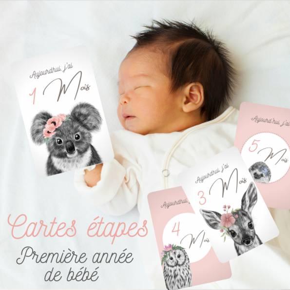12 Cartes étapes - La première année de bébé - Thème Dessin Animaux Rose