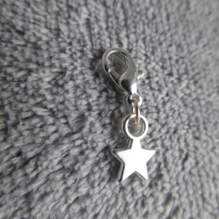 Mousqueton charms mini étoile - thème nature