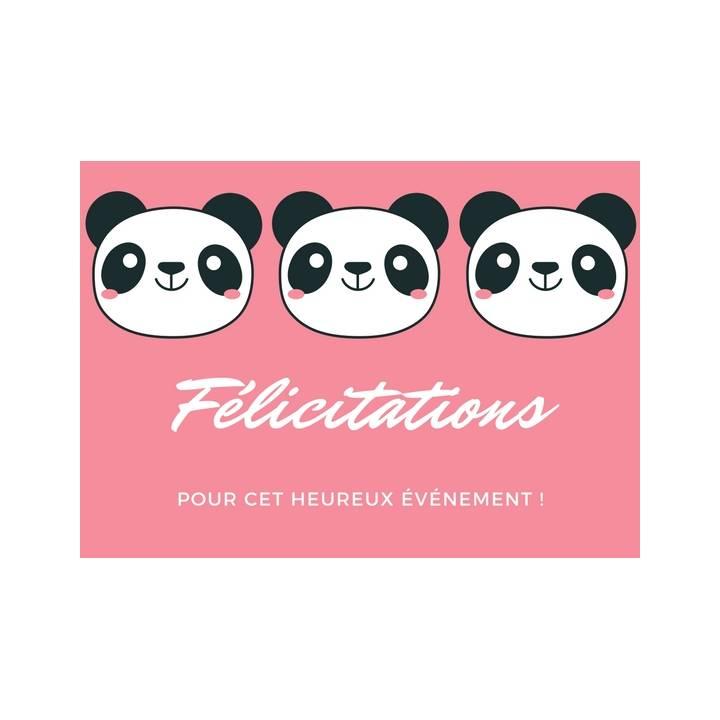 Carte Postale De Voeux Felicitations Grossesse Ou Naissance